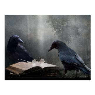 Leser Postkarte