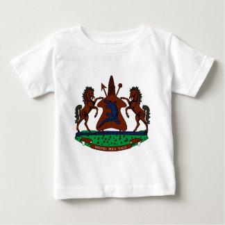 Lesotho Baby T-shirt