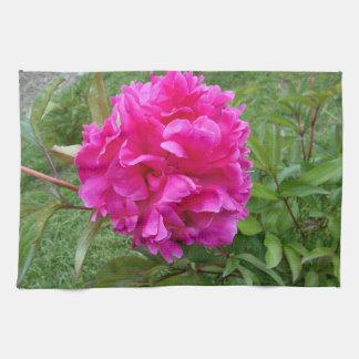 Leuchtende rosa Pfingstrose Küchentuch