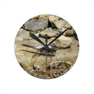 Libelle auf SteinWanduhr Runde Wanduhr