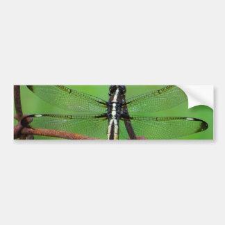 Libelle Autoaufkleber