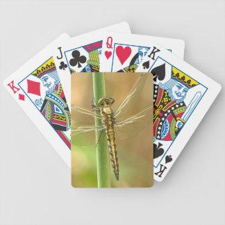 Libelle Bicycle Spielkarten