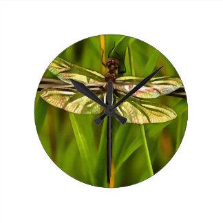 Libelle in Brown und im Gelb Runde Wanduhr