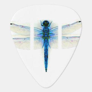 Libelle Plektron