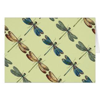 Libellen-Illustrationen Grußkarte