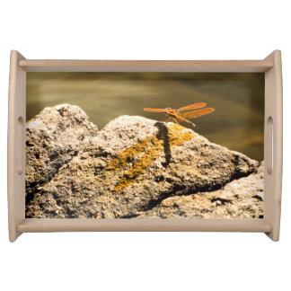 Libellesun-Baden Tablett