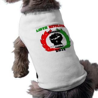 Libyen-Revolution Top
