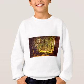 Licht im Wald Sweatshirt