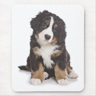 Liebe Bernese Gebirgswelpen-Hundemausunterlage Mousepad