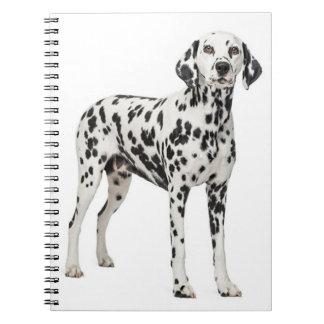 Liebe-dalmatinischer Welpen-Hund - gepunkteter Notizblock