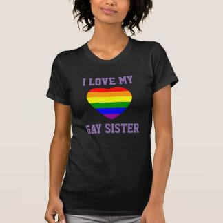 Liebe der Gay Pride-Unterstützungsi meine T-Shirt