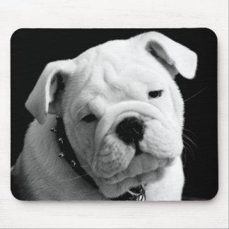Liebe-englisches Bulldoggen-Welpen-HundeFoto Mousepad