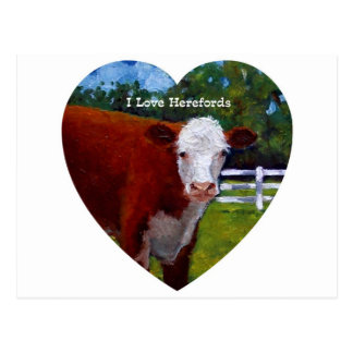 Liebe Herefords: Ursprüngliches Ölgemälde, Kühe Postkarte