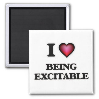 Liebe I, die erregbar ist Quadratischer Magnet
