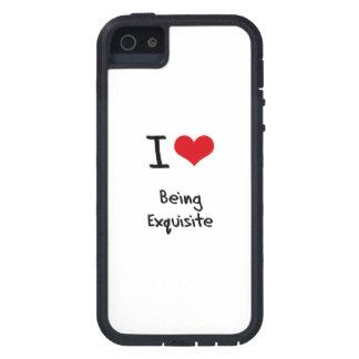 Liebe I, die vorzüglich ist iPhone 5 Etuis