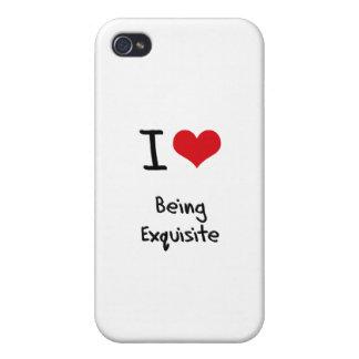 Liebe I die vorzüglich ist iPhone 4/4S Hüllen