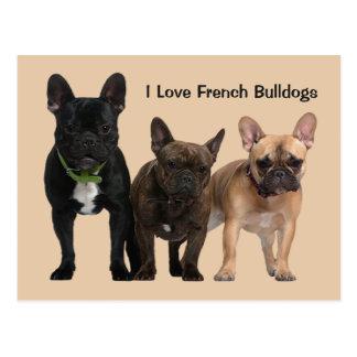 Liebe I französische Bulldoggen Postkarte