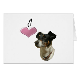 Liebe I Jack-Russell-Hunde Karte