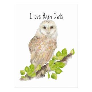 Liebe I Schleiereulen - Vogel Postkarte