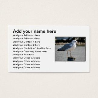 Liebe I Seemöwen! Visitenkarte