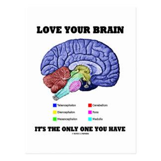 Liebe Ihr Gehirn ist es das einzige, das Sie haben Postkarte