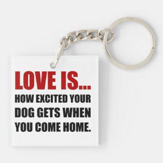 Liebe ist der aufgeregte Hund kommen Zuhause Schlüsselanhänger