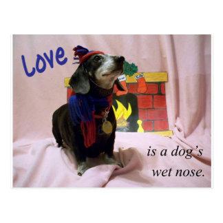 Liebe ist die nasse Nase eines Hundes Postkarte