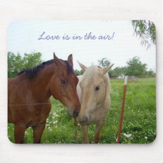 Liebe ist in der Luft - Pferde Mauspad