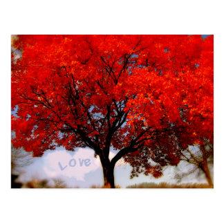 Liebe ist in der Luft… Postkarte