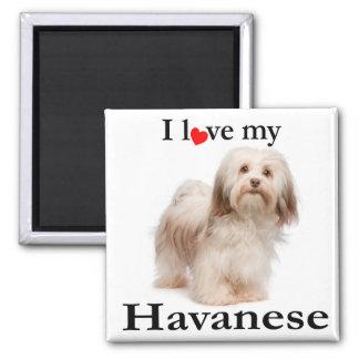 Liebe mein Havanese Magnet