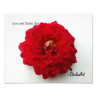 Liebe mit Dahlie-Rot Fotodruck