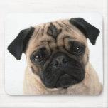 Liebe-Mops-Welpen-Hund mit Herzen Mousepad