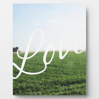 Liebe-Skript-Typografie-Natur-grasartige Wiese Fotoplatte