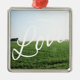 Liebe-Skript-Typografie-Natur-grasartige Wiese Quadratisches Silberfarbenes Ornament
