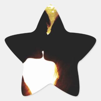 Liebe und Sommer Stern-Aufkleber