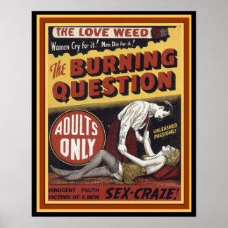 Liebe-Unkraut: Die brennende Frage 16 x Plakat 20