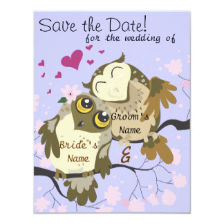 Liebe-Vogel-Eulen-Hochzeit lädt ein Karte