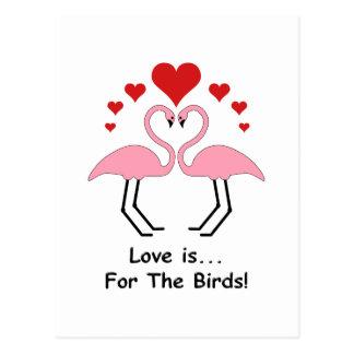 Liebe-Vogel-Flamingos Postkarte