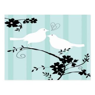 Liebe-Vögel Postkarte