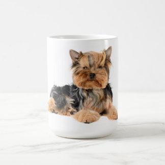 Liebe-Yorkshire-Terrier-Welpen-Hund - Yorkie Kaffeetasse