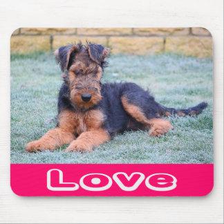 Liebeairedale-Terrier-Welpen-Hundecomputer Mousepa Mousepad