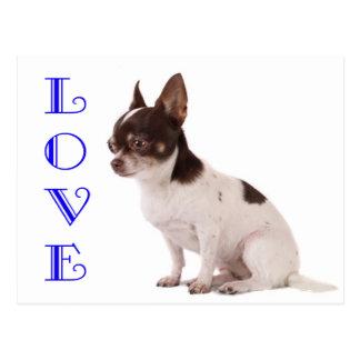 Liebechihuahua-Welpen-Hundepostkarte Postkarte