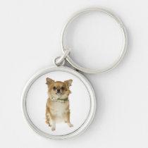 Liebechihuahua-Welpen-Hundeschlüsselkette Silberfarbener Runder Schlüsselanhänger