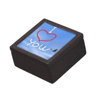 Liebemitteilung vom biplan Rauche - 3D übertragen Schmuckkiste