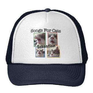 Lieder für Katzen - Sebastian-Fernlastfahrer-Hut Netzcap