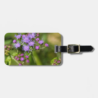 Lila Ageratums-Wildblumen Kofferanhänger
