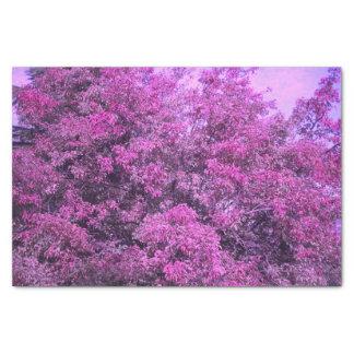 Lila Baum-Seidenpapier Seidenpapier