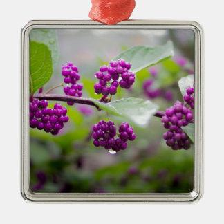 Lila Beeren Silbernes Ornament