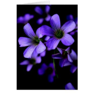 Lila blaue Frühlings-Blumen Karte