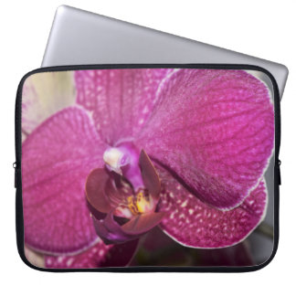 Lila Blume Laptopschutzhülle